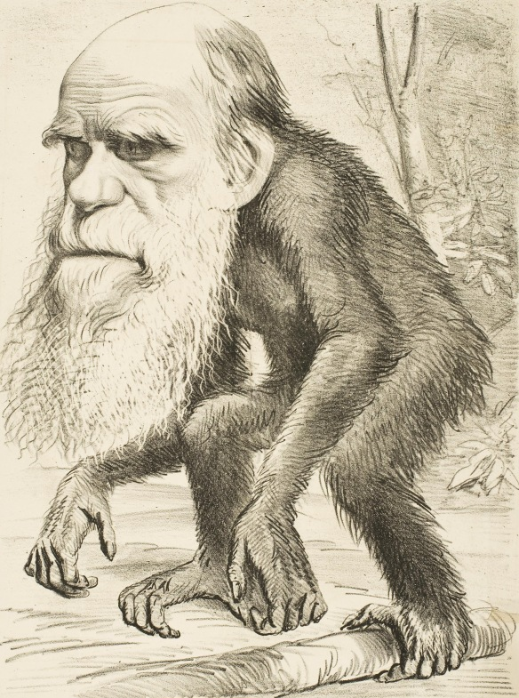 """A venerable Orang-Outang. A contribution to unnatural history""  Darwin-caricature as published in 1871 by ""The Hornet"""